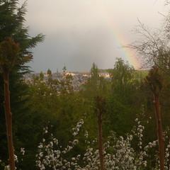 Rainbow on Louvain-la-Neuve (boula.matari) Tags: sky en tree pine landscape spring rainbow woods cityscape belgium belgique belgie arc ciel blossoming paysage printemps treescape arcenciel belgien potofgold sprigs louvainlaneuve ottignies bruyères boisdesrêves arbreenfleurs blocry
