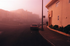 In a soft pink morning light. (Pink Fog #1) (Robert Ogilvie) Tags: t carlzeiss contaxax fujivelvia50 slidefilm expiredfilm ford mustang fog gwsf foundinsf