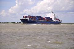Violet (larry_antwerp) Tags: haven port ship belgium violet vessel container antwerp schelde schip cmacgm 9314935