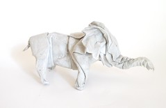 African Elephant (reupload and reshaped) (folding~well) Tags: elephant paper origami folding