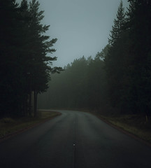 500px Photo ID: 88587047 (andrejsmaculskis) Tags: road fog