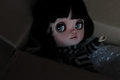 (Loony-Doll) Tags: doll makeup full wig blythe icy custom fc custo eyechips customise icydoll polkadollsfabrics