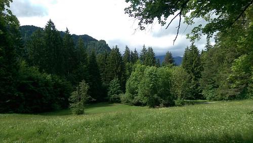 Rundtour Alpenrosenweg