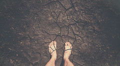Edge (szesory) Tags: foot sony drought 24mm samyang ilce7
