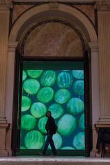 photoset: Wiener Festwochen: Sigalit Landau (Künstlerhaus Wien (15.5. - 19.6.2016)