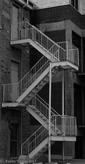 White Escalate (andres_vargas444) Tags: trees sunset red vacation people blackandwhite bw snow cold flower nature birds animal stairs train buildings squirrel colours photographer montreal sony young tracks kitlens teen telephoto 16 bandw a58 ameture sonya58