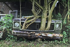 Hybrid (Nils Grudzielski) Tags: auto old urban tree cute green cars abandoned nature car trash canon lost raw outdoor alt decay steel natur rusty forgotten urbanexploration hybrid rost kaputt urbex abandonedplaces marode vergessen