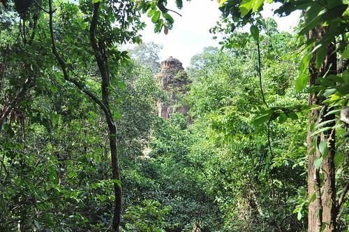 angkor - cambodge 2014 89