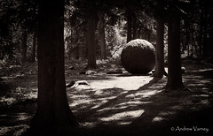 Sphere 63/366 (andrew.varney) Tags: uk blackandwhite sculpture art monochrome outdoors blackwhite woods nikon surrey 365 farnham 366 d5100