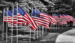 June 11 2016 - Cody, WY ~ Field of Honor (lazy_photog) Tags: blue red white color stars photography stripes flags lazy american wyoming cody elliott selective photog worland 061116codycancerpokerrun