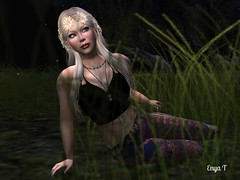 Moonlight daydreaming (Enya T.) Tags: nature moonlight enya second life sl forest night outdoors