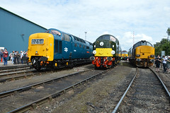 55009 40013 37423 Crewe GB (Adam McMillan Railway Photography) Tags: 37423 55009 40013 loco rail crewe ee english electric railway old heritage open day