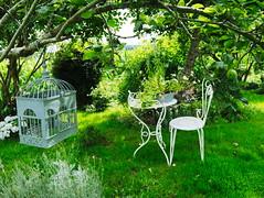 Pause jardin (insd) Tags: jardin garden table fer forg