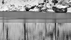 Winterly Tristesse at a Quarry Pond 04 (MJWoerner49) Tags: outdoor nature gloominess murkiness rees weather winter ice rocks structure surface reflection cold frosty winterly wintery wintry lake pond pool quarry quarrypond glacial icy