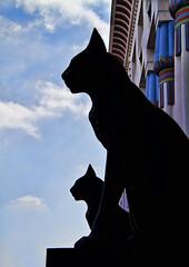 Art Deco_20150406_7020 (Joseph Pearson Images) Tags: black london cat artdeco morningtoncrescent carrerascigarettefactory agporri mecollins ohcollins