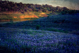 Sunset on the Texas Colorado River_4096-