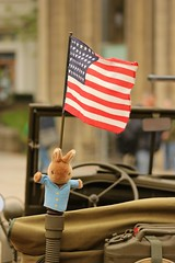 Peter Action Rabbit (Derbyshire Harrier) Tags: rabbit sheffield wwii peterrabbit ve mascot reenactment southyorkshire starsstripes livinghistory militaryvehicles 2015 vedaycelebrations sheffieldcathedral americanforces usarmyjeep veday70
