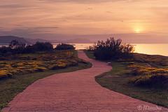 Path near the sea (Mimadeo) Tags: park sunset sea sun clouds sunrise landscape coast outdoor path nobody trail footpath bizkaia euskadi pathway vizcaya basquecountry paisvasco getxo pavingstones