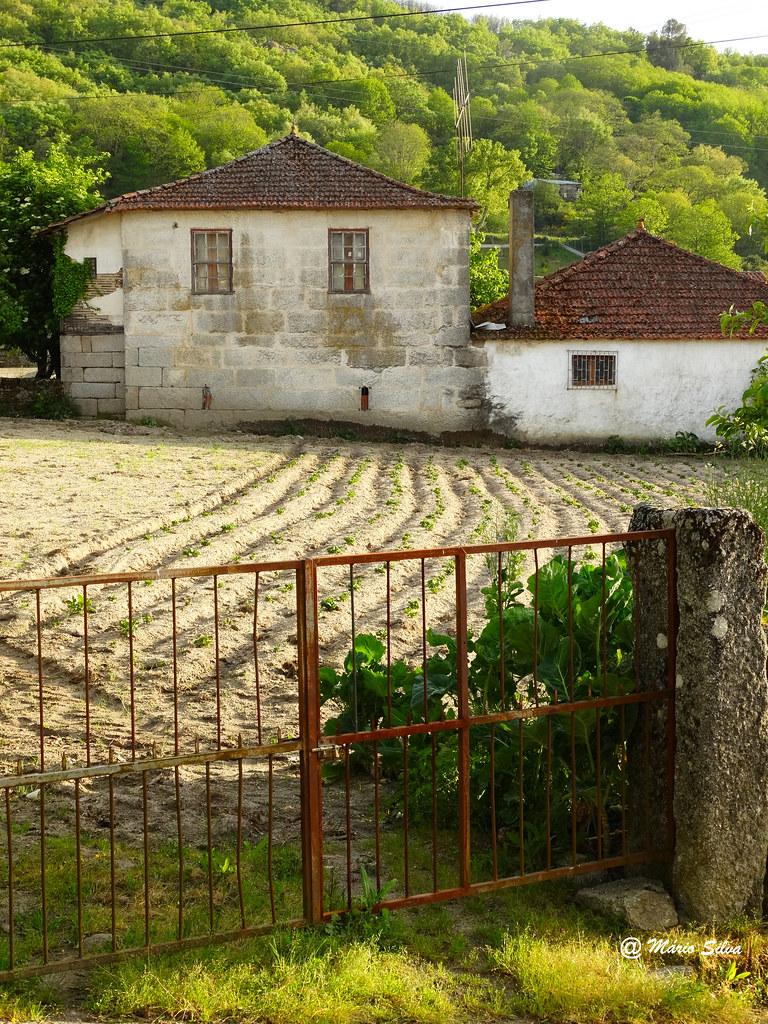 Águas Frias (Chaves) - ... O campo lavrado e duas casas ...