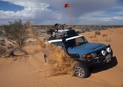 WOMAN DRIVER..log (Cruising, traveling & dive pics.) Tags: car log outback 2015 simpsondesert