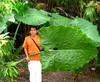 ~Oct 2009 Fairchild Gardens #13~ (endemanf) Tags: miamiflorida fairchildbotanicalgardens tropicallandscapes tropicaljunglegardens