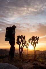 Sunset (Joshua Tree National Park) Tags: sunset sky people silhouette clouds nationalpark desert hiking joshuatree backpacking joshuatreenationalpark