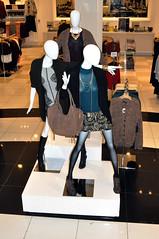 Dubai_Mall_Updates (6)