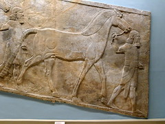 Bas-reliefs assyiens (Ninive) (3) (Mhln) Tags: england london museum londres angleterre british ninive khorsabad assyrie