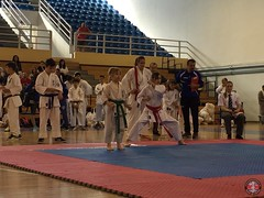stefanou_15_5_2016_knockdown_41