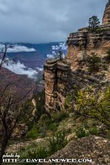 DSC_3030 (davelandweb) Tags: nationalpark grandcanyon southrim brightangeltrail nikond5 nikonphotography