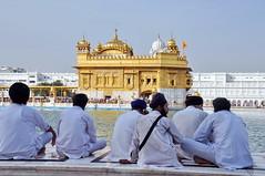 India - Punjab - Amritsar - Golden Temple - 322 (asienman) Tags: india sikh punjab amritsar gurudwara goldentemple harmandirsahib asienmanphotography