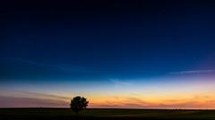 Zalesie - ju si zmierzcha (RafalGorski) Tags: pink blue sunset red sky orange tree green nature night clouds spring twilight warm view horizon polska pola mothernature maj zachd soca wiosna drzewo wieczr lubelszczyzna zmierzch lubelskie gwiazdy niepieski
