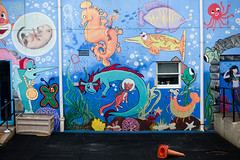 kiddy mural (nicknormal) Tags: streetart newyork cat graffiti us mural jellyfish seahorse unitedstates starfish shrimp beaver oxygen octopus longislandcity swordfish