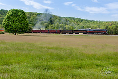 "Goin' ""Green"" (Drifton) Tags: railroad tree green train j virginia spring nw track norfolk tracks engine rail railway steam va western rails locomotive simple 611 norfolksouthern 2016 j611 fireup611"