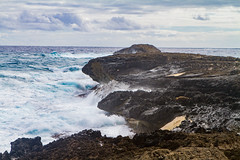 IMG_4072 (The.Rohit) Tags: ocean travel vacation beach hawaii waves oahu explore aloha seaarch laiepoint windwardcoast laiiepoint