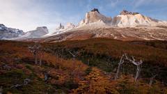 Mirador (ckocur) Tags: chile patagonia southamerica trekking trek nationalpark hiking hike torresdelpaine treking tdp thew 2016 southernchile southernpatagonia australchile