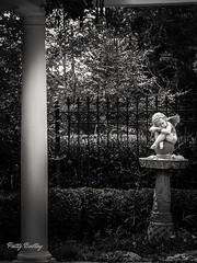 Sleeping Cherub (Patty Ballay) Tags: nature garden birdbath cherub column pattyballay