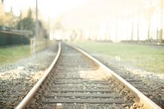 Endless (sonia.sanre) Tags: classic train tren bokeh rail simple sensations endless fuga vias vanished clasica