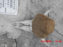 "Pengembaraan Sakuntala ank 26 Merbabu & Merapi 2014 • <a style=""font-size:0.8em;"" href=""http://www.flickr.com/photos/24767572@N00/27068000292/"" target=""_blank"">View on Flickr</a>"
