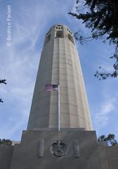 2989_30062015 (beapac) Tags: sanfrancisco california usa coittower telegraphhill