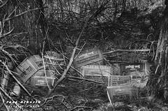 cajas de cerveza (jose alb) Tags: blanco nikon y negro basura abandono suciedad descuido josealberto d7000 anticivismo