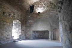 P9980597 (Patricia Cuni) Tags: castle scotland edinburgh escocia edimburgo castillo craigmillar