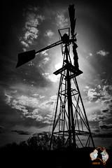 20160418-2ADU-013 Flinders Ranges
