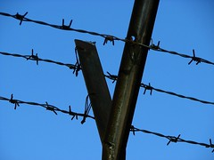 Prison barbed wire (JobsForFelonsHub) Tags: wire prison barb barbed