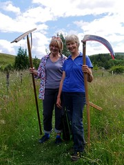 Sue and Anette (Researching Media) Tags: wildflowers scythe haymeadow