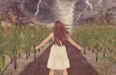 Embrace the Storm (KiSMeT FaiTH) Tags: secondlife redemption reverie hairfair weatherornot argrace wiccaswardrobe
