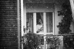 grandinata - icestorm - 2662016 (Pietro Luzzati) Tags: street summer italy storm ice window italia estate tempesta ghiaccio 2016 grandine vicini grandinata