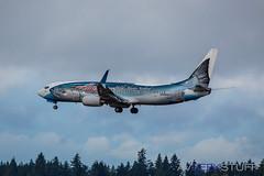N559AS_KSEA_7_9_16 (AvGeekStuff) Tags: sea boeing 737 alaskaairlines salmonthirtysalmon n559as
