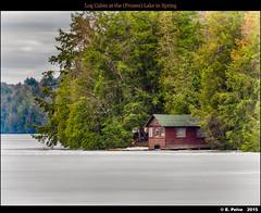Log Cabin at the (Frozen) Lake in Spring (episa) Tags: lake ice log cabin smoke algonquinpark olympusomdem1 spring2015 mzuiko40150mmf28pro teleconvertermzuikomc14