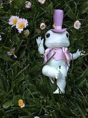 Soom Toad - Frog Prince (vadafade) Tags: green doll prince frog suit toad bjd resin soom dapper